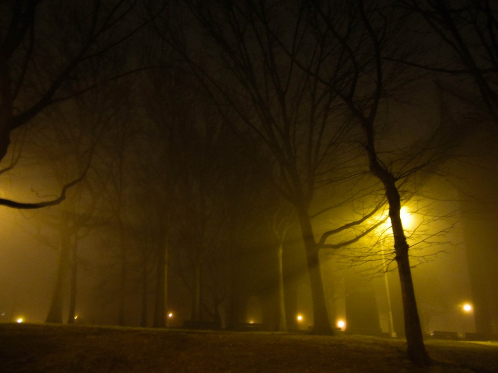 Misty night in Astoria Park