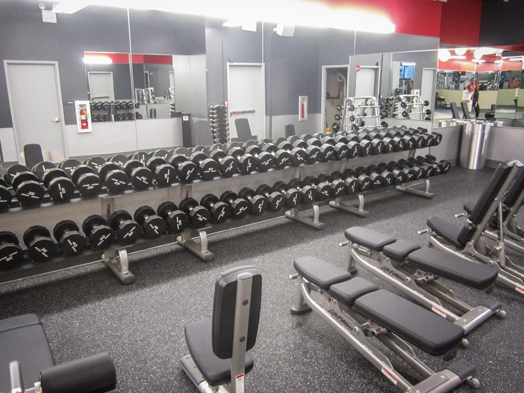 Blink Fitness Gym Review of Weight Room Jackson Heights Queens
